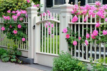 גדר לגינה שישמור לכם על הבית